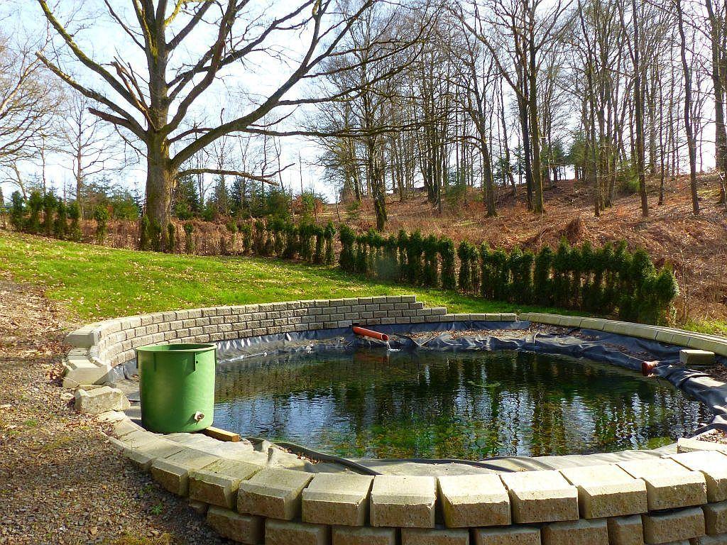 Gepflegte Teichanlage