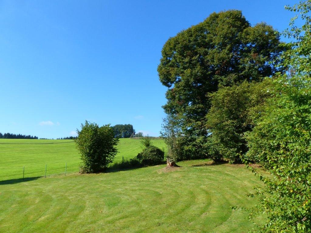 Teilbereich Garten und Wiese